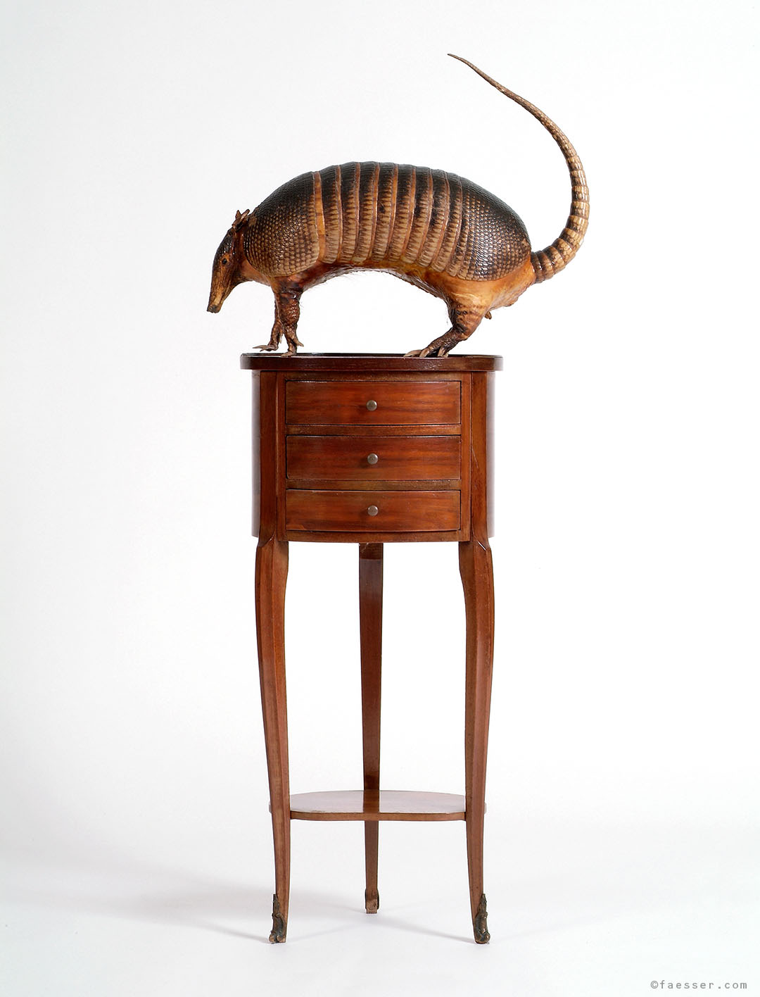 Armadillo on a small furniture chest of drawers; work of art; artist Roland Faesser, sculptor and painter 1990